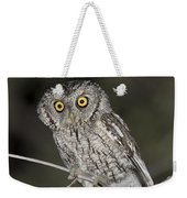 Whiskered Screech Owl Weekender Tote Bag