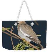 White-winged Dove Weekender Tote Bag