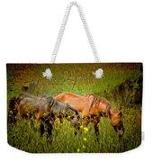 Wild Horses In California Series 2 Weekender Tote Bag