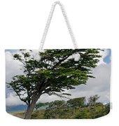 Wind-bent Tree In Tierra Del Fuego Weekender Tote Bag