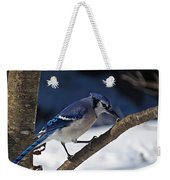 Hungry Winter Blue Jay Weekender Tote Bag