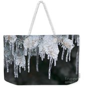 Winter Branches In Ice Weekender Tote Bag