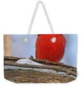 Winter Cardinal Weekender Tote Bag