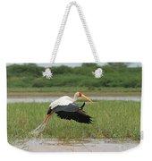 Yellow-billed Stork Mycteria Ibis Weekender Tote Bag