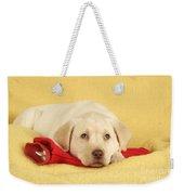 Yellow Labrador Puppy Weekender Tote Bag