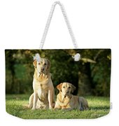 Yellow Labrador Retrievers Weekender Tote Bag