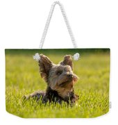 Yorkshire Terrier Weekender Tote Bag