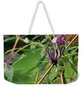 Zebra Swallowtail Butterfly At Butterfly Bush Weekender Tote Bag