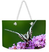 Zebra Swallowtail Butterfly Square Weekender Tote Bag