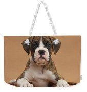 Boxer Puppy Weekender Tote Bag by Mark Taylor