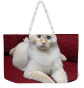 Flame Point Siamese Cat Weekender Tote Bag