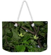Forest Hill Gardens In Queens Weekender Tote Bag