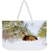 Mule Deer In Snow Weekender Tote Bag