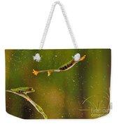 Red-eyed Tree Frog Weekender Tote Bag