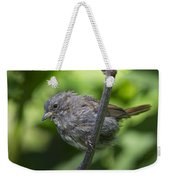 Song Sparrow Weekender Tote Bag