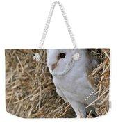 100205p201 Weekender Tote Bag