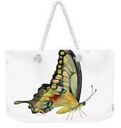 104 Perched Swallowtail Butterfly Weekender Tote Bag by Amy Kirkpatrick