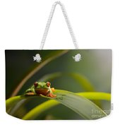 Red Eyed Tree Frog Weekender Tote Bag