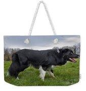 110506p164 Weekender Tote Bag