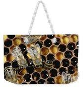 Honey Bees On Honeycomb Weekender Tote Bag