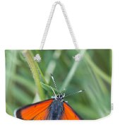 12 Balkan Copper Butterfly Weekender Tote Bag
