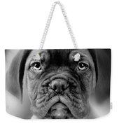 Boxer Dog Weekender Tote Bag