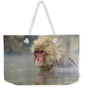 Snow Monkeys Weekender Tote Bag