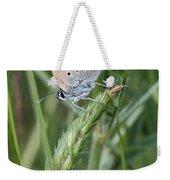 13 Balkan Copper Butterfly Weekender Tote Bag
