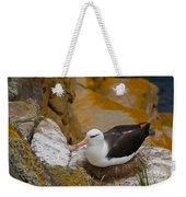 Black-browed Albatross Weekender Tote Bag