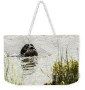 Labrador Retriever Weekender Tote Bag