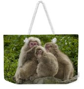 Snow Monkey, Japan Weekender Tote Bag
