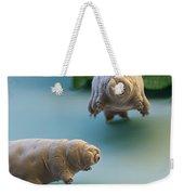 Water Bear Weekender Tote Bag by Eye of Science and Science Source