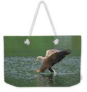 White-tailed Sea Eagle In Norway Weekender Tote Bag