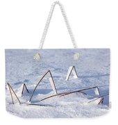 130201p362 Weekender Tote Bag
