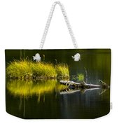 131005b-029 Forest Pond 2 Weekender Tote Bag