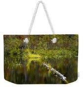 131005b-052 Forest Marsh 2 Weekender Tote Bag