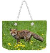 131018p150 Weekender Tote Bag