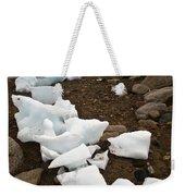 Antarctica Weekender Tote Bag