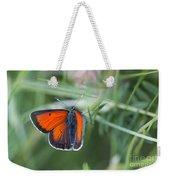 14 Balkan Copper Butterfly Weekender Tote Bag