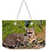 Cat In Hydra Island Weekender Tote Bag