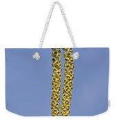 140420p090 Weekender Tote Bag