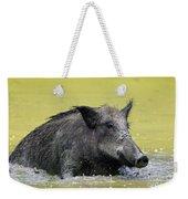 140530p337 Weekender Tote Bag