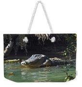 American Alligator  Weekender Tote Bag