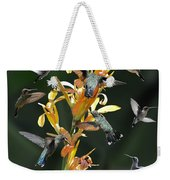 15 Hummingbirds Weekender Tote Bag