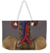 The Renal System Weekender Tote Bag