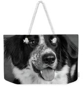 Portrait Of A Border Collie Mix Dog Weekender Tote Bag