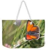 17 Balkan Copper Butterfly Weekender Tote Bag