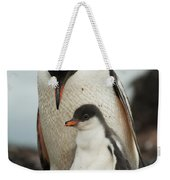 Gentoo Penguin With Young Weekender Tote Bag