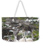 17 Mile Drive Tree Weekender Tote Bag