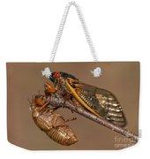 17-year Periodical Cicada II Weekender Tote Bag